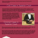 Role of the Superior Courts